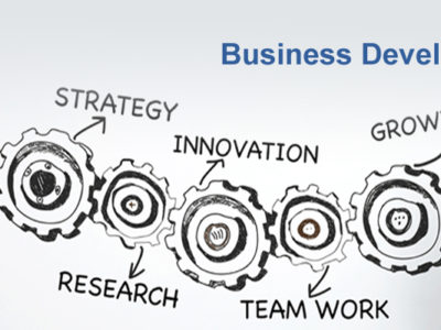 Why you need a business development service provider?